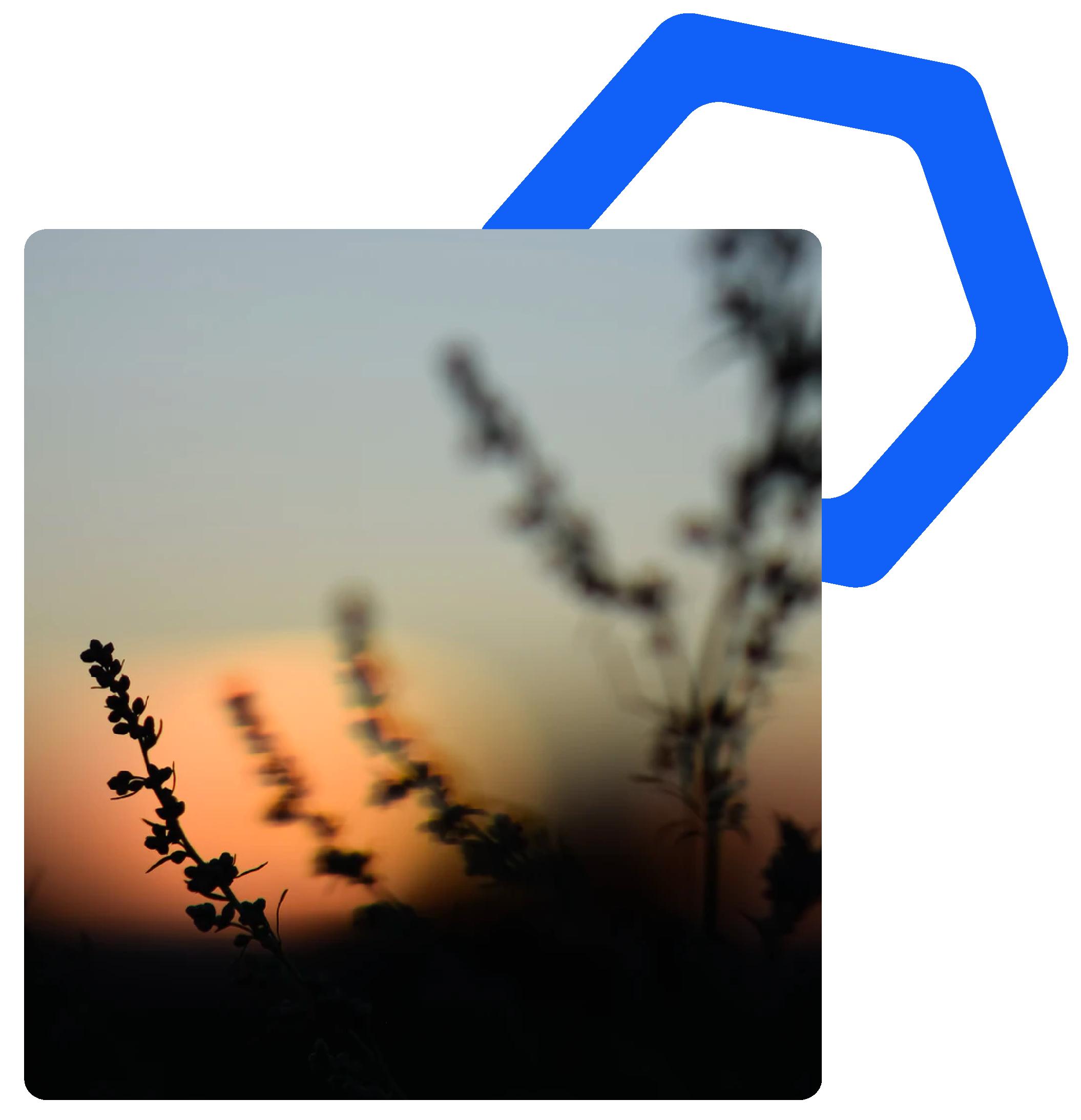 CE_images_24_3d044424cc