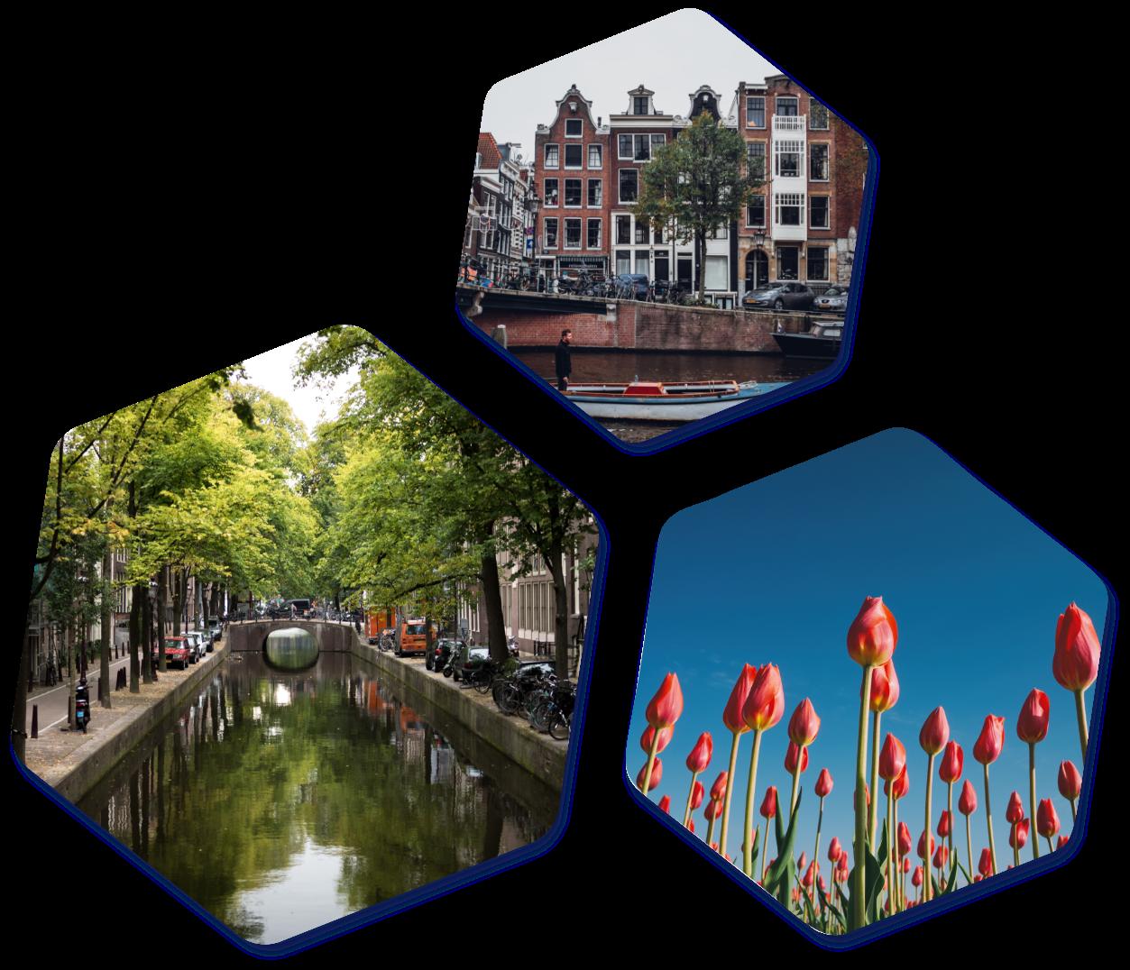 Netherlands hexagon images
