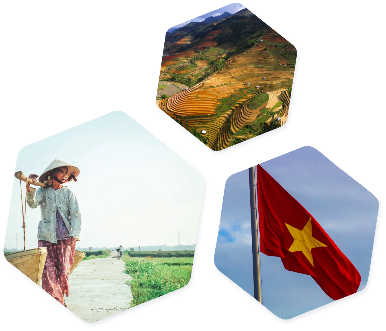 Vietnam images hexagons