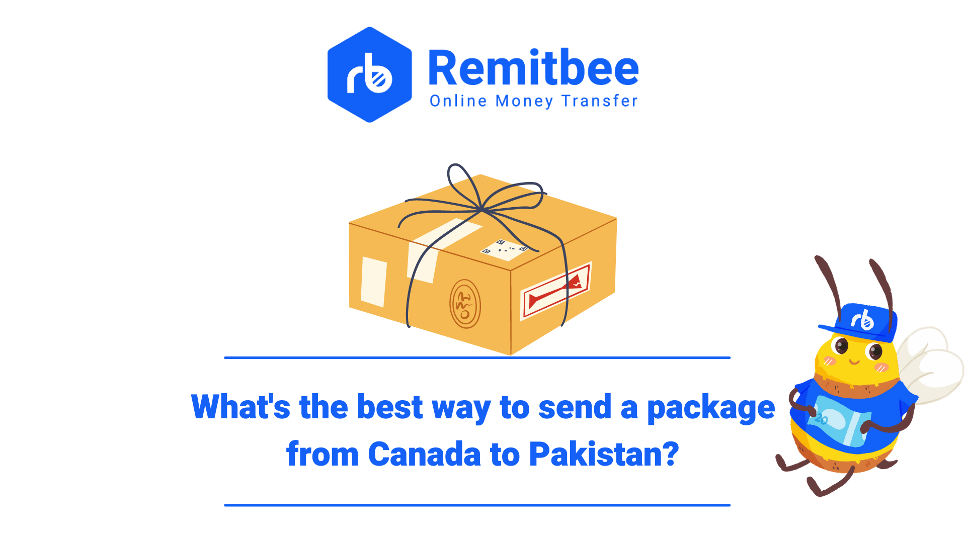 The complete guide on how to send your packages to loved ones in Pakistan from Canada