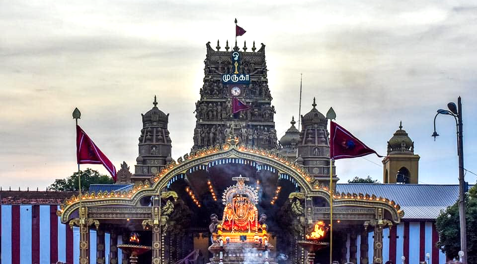 What is the Nallur Kandaswamy Temple Festival
