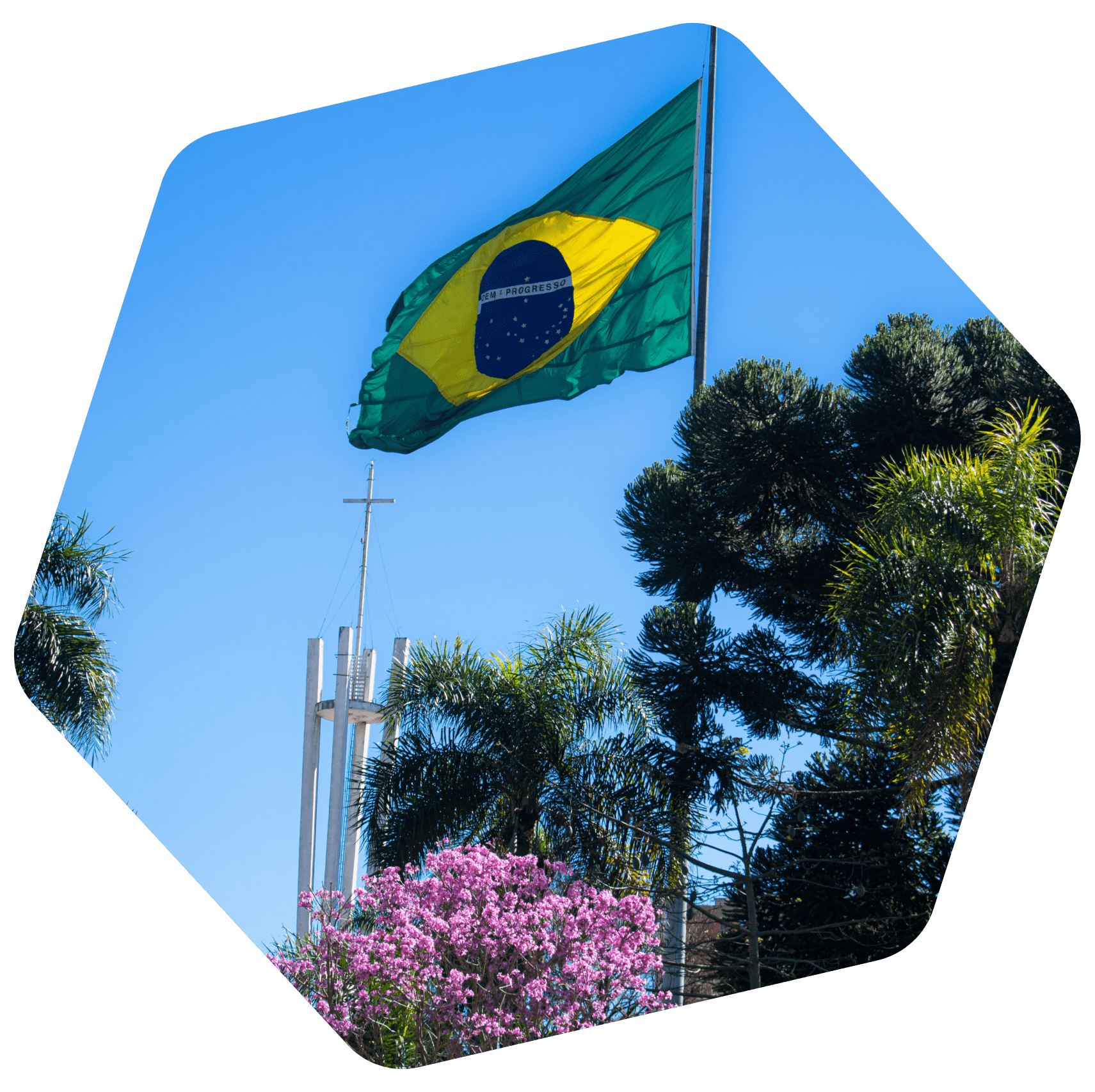 Brazilian couple with flag